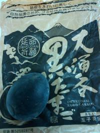Oowakudani_egg