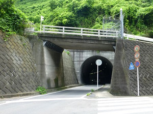 03shinzushi