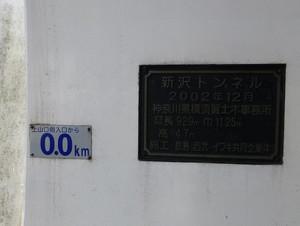 10shinzawa01