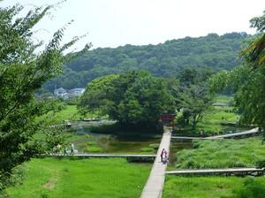 Itukushima01