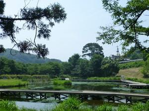 Itukushima02