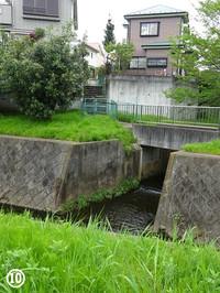 10wasabizawa_r