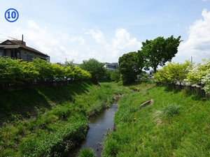 10koyama_b