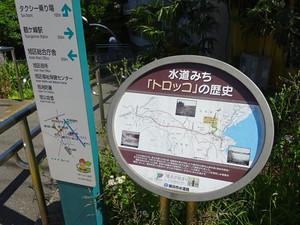 03kawashima