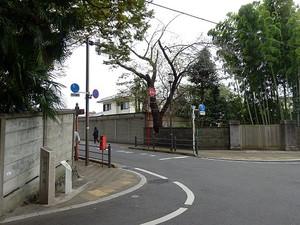 Kyotumiti01