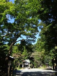 Shirane