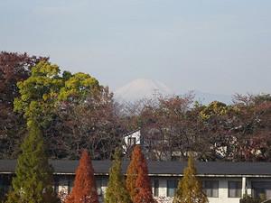 02hanezawa