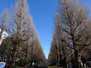 03hiyoshi