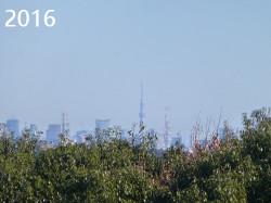 Skytree2016