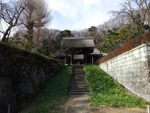 Saihoji01