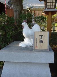 03hibita_r