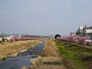 Izumikawara_b