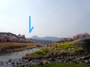 Shiawasemiti02