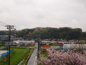 Kodukue