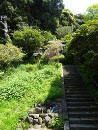 Takinosaka02