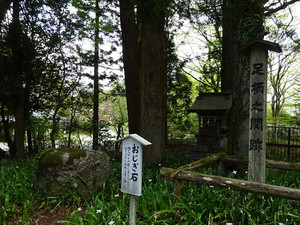 Ashigara_g02