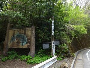Ashigara_t