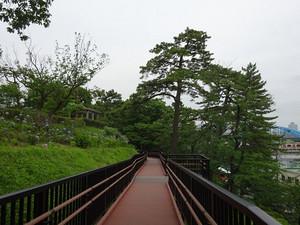 Tamagawadai04