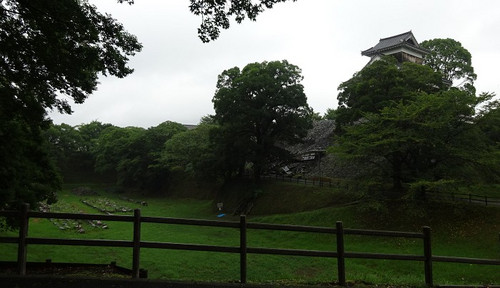07hitujizaruyagura