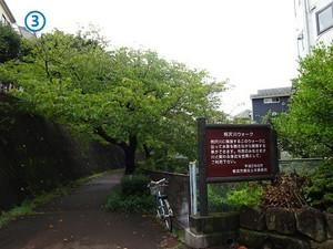 03aizawa_r