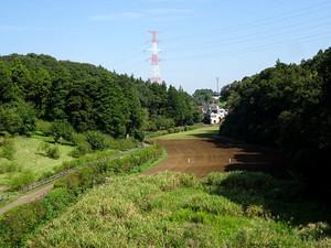 Oiwake01