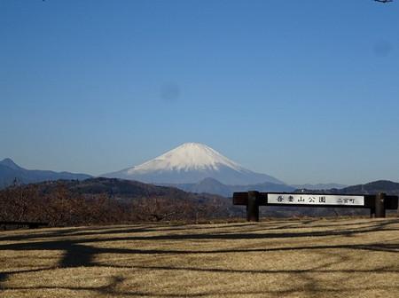 Azuma_m02