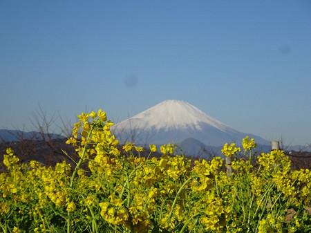 Azuma_m04