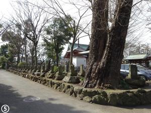 05shikoku