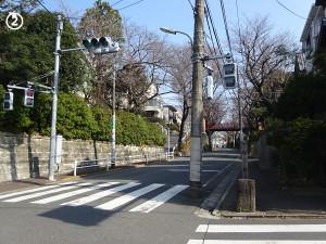 02sakurazaka01