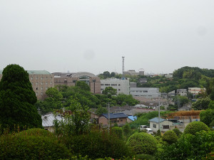 04ushikubo02