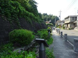 06nakayoshi_s