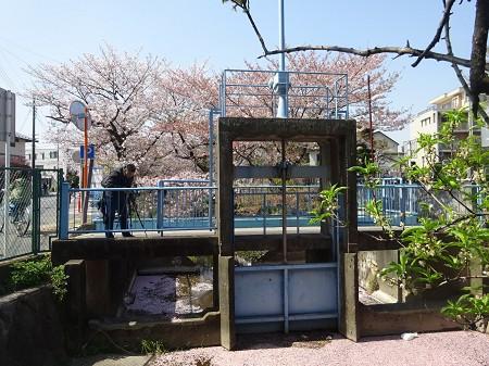 10shibu_r