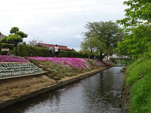 Shibuta08